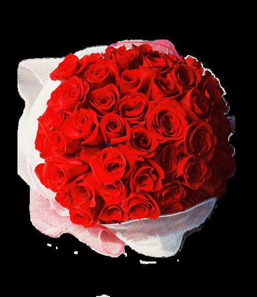 100 rose bouquet - Red Garden Rose Bouquet